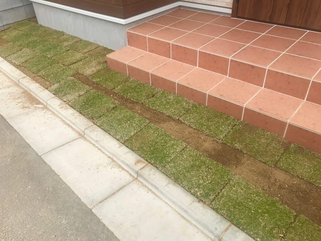 お庭の芝生