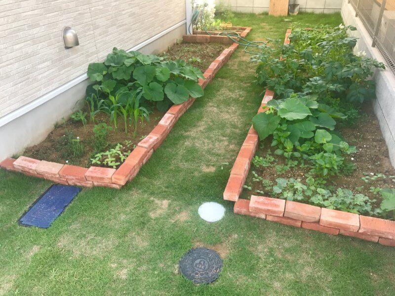 花壇と青々とした芝生