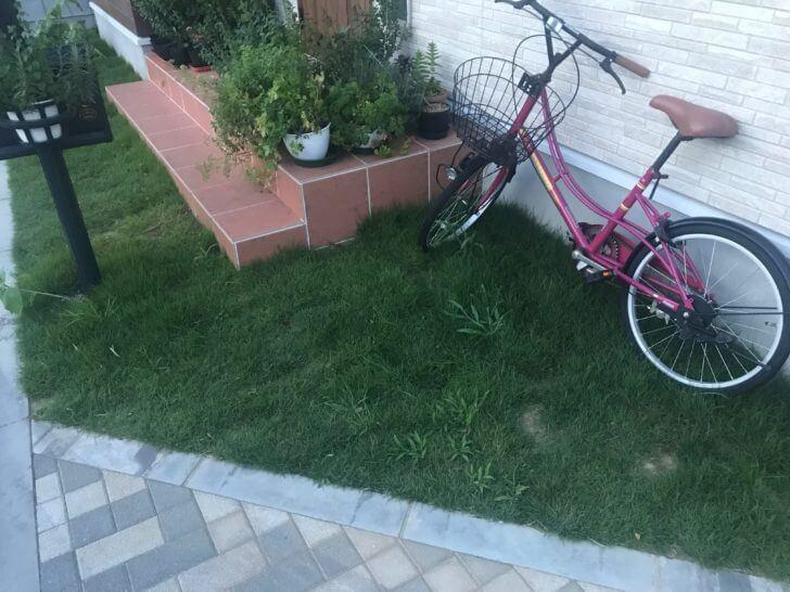玄関の芝生