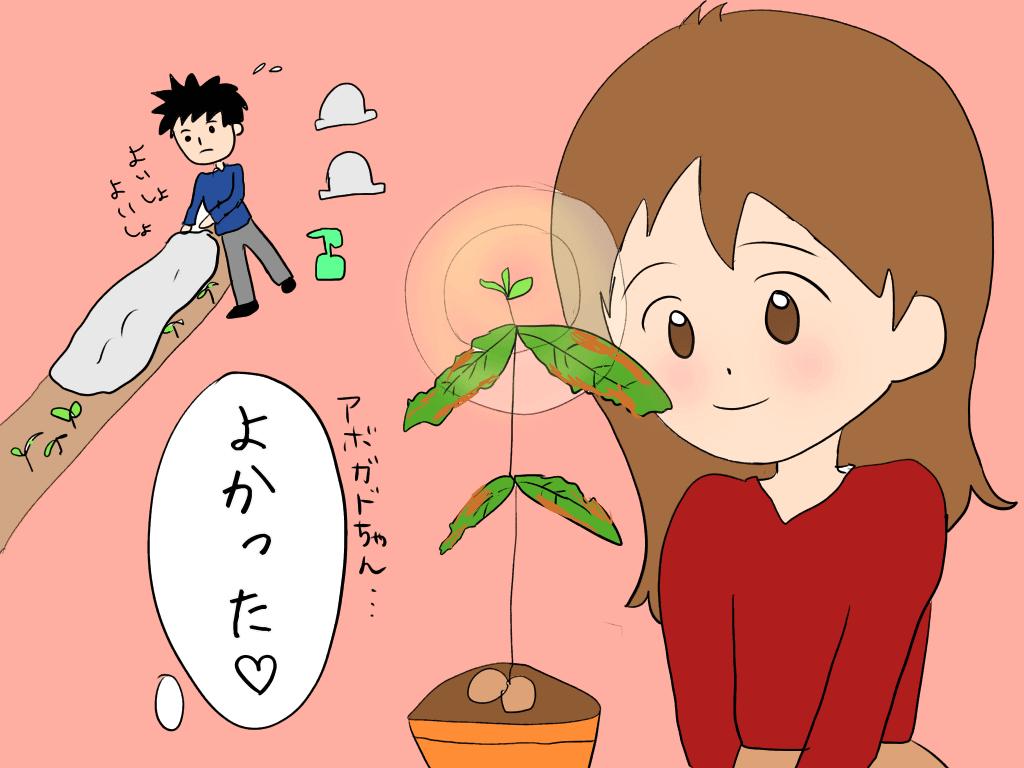 塩害で枯れた植物