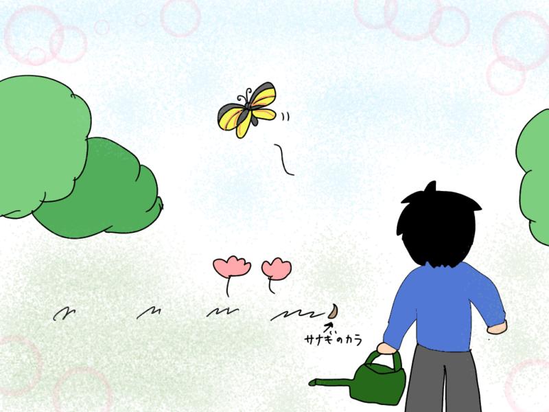 ゆず太郎くんとアゲハ蝶